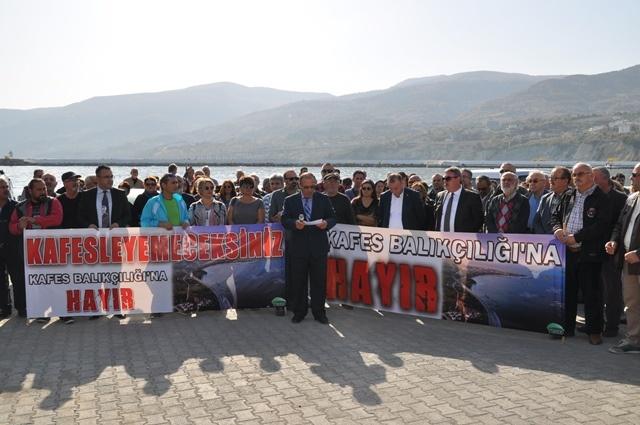 Gerze Kafes Balıkçılığı Basın Toplantısı