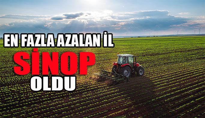 Tarım arazileri en fazla azalan il Sinop oldu