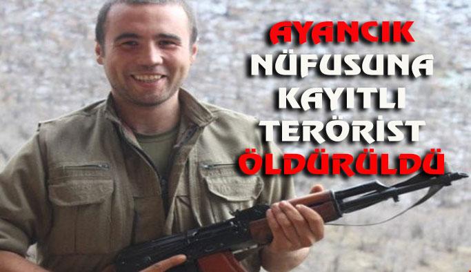 PKK'ya katılan Ayancıklı terörist öldürüldü