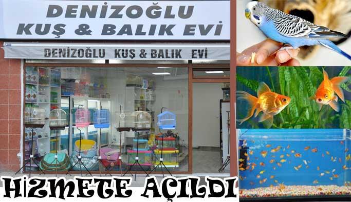Denizoğlu kuş & balık evi açıldı