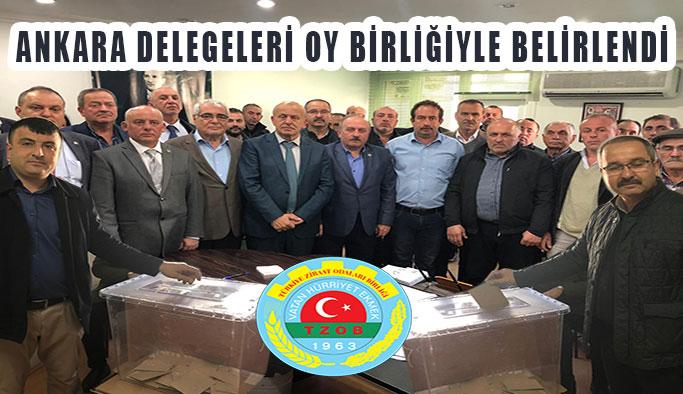 Ankara Delegeleri Seçimle Belli Oldu