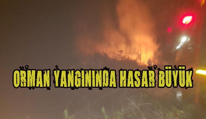 Hızarçayı'nda Orman Yangını