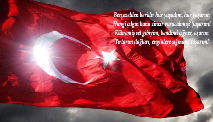Türk Bayrağını Yırtan Milletvekiline Sert Tepkiler Geliyor