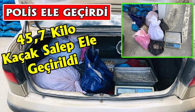 45,7 Kilo Kaçak Salep Ele Geçirildi