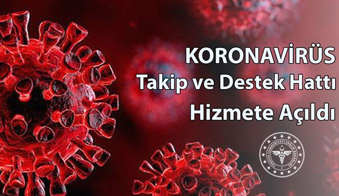 Koronavirüs Takip Ve Destek Hattı Kuruldu