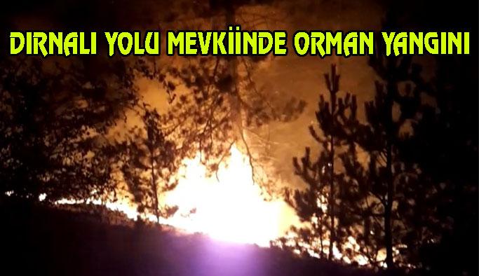 Tatlıcak Köyünde Orman Yangını