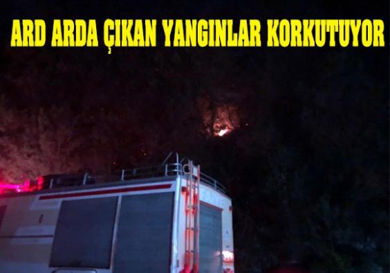 Yangınlar Tedirgin Ediyor