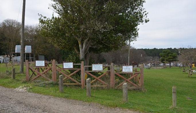 Sinop'taki tarihi mezarların sırrı çözüldü