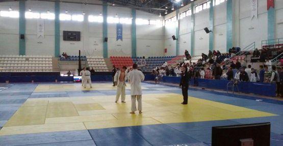 Analig Judo Yarı Finali İlimizde Gerçekleştirildi