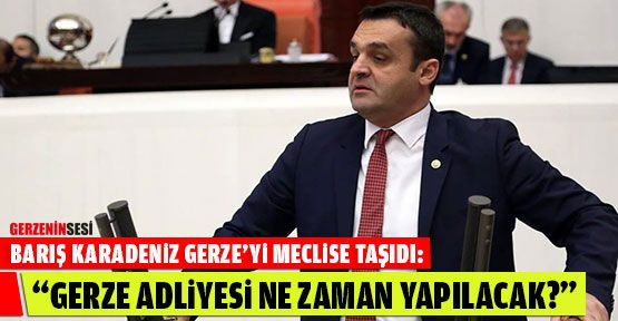 Barış Karadeniz, Gerze'yi Meclis Gündemine Taşıdı
