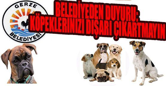 Belediyeden Duyuru: Köpeklerinizi Dışarı Çıkartmayın!