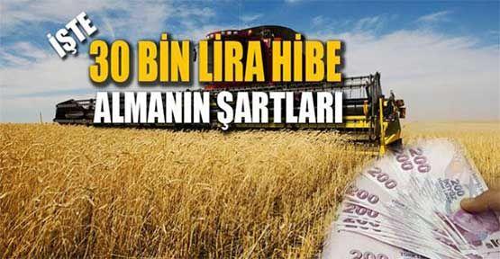 Genç Çiftçiye 30 Bin TL Hibe Programının Ayrıntıları Belli Oldu