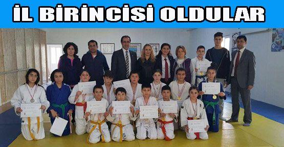 Judo Yıldızlar İl Birinciliği Müsabakaları Gerze'de Yapıldı