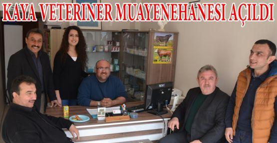 Kaya Veteriner Muayenehanesi Açıldı