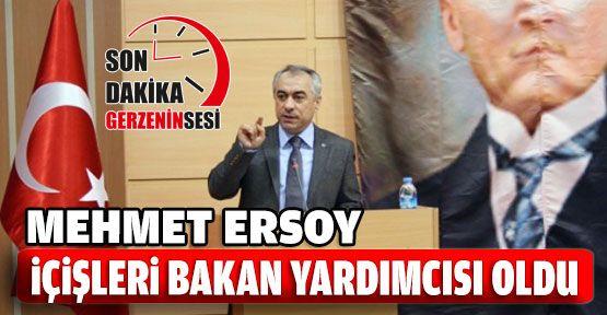 Mehmet Ersoy İçişleri Bakan Yardımcısı Oldu