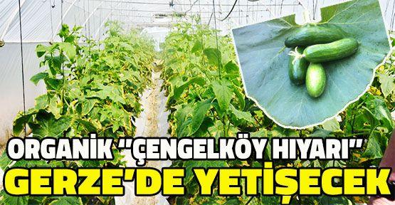 """""""Organik tarım geleceği, organik ürün sağlığı korur"""""""