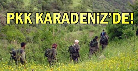 PKK Terör Örgütü Karadeniz'de