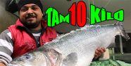 10 Kiloluk Levrek Yakalandı
