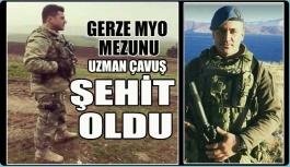 Gerze MYO Mezunu Asker Afrin'de Şehit Oldu