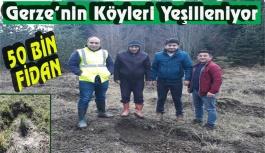 Gerze'nin Köyleri Yeşilleniyor