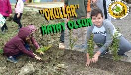Gerze ve Dikmen'de  'Okullar Hayat Olsun' projesi