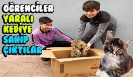 Yaralı kediye öğrenciler sahip çıktı