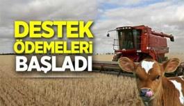 Çiftçilere destek ödemeleri başladı