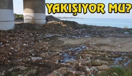 Çöp Konteynırları Boş, Yerler Dolu
