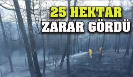 25 Hektarlık Bilanço!