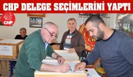 CHP'de Delege Seçimleri Yapıldı