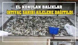 El konulan balıklar ihtiyaç sahibi ailelere...