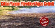 Arazi Yangını Korku ve Paniğe Neden Oldu
