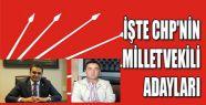 CHP Sinop Milletvekili Listesi