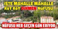 Dikmen'in Mahalle Mahalle, Köy Köy Nüfus...