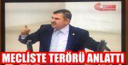 MAVİŞ MECLİS'TE TERÖRÜ KONUŞTU
