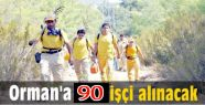 Orman İşletme Müdürlüğü 90 İşçi...