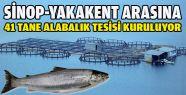 Sinop-Yakakent Arasına 41 Alabalık Tesisi
