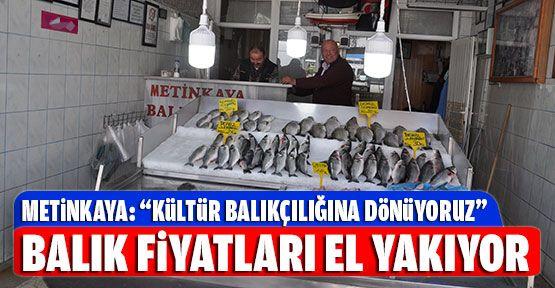 Yasaklar Başladı Balık Fiyatları Arttı